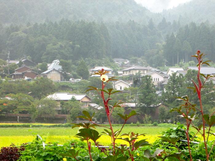 雨の日はお休みしましょう_c0100195_9273472.jpg
