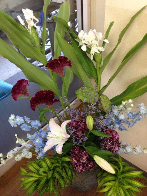 今週のお花とセール情報_a0200423_19545027.jpg