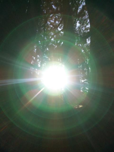 【第4回子宮美人幸せライフ 『Miracles of 子宮』~気づかずに眠ってきた子宮からの声を感じるワーク~】_a0201829_2234083.jpg
