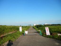 仙台 亘理 自転車道路へ _e0140354_15543083.jpg