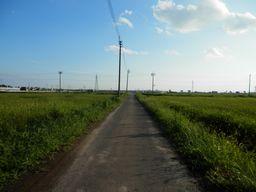 仙台 亘理 自転車道路へ _e0140354_1555549.jpg