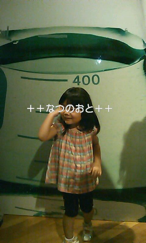b0242064_117341.jpg