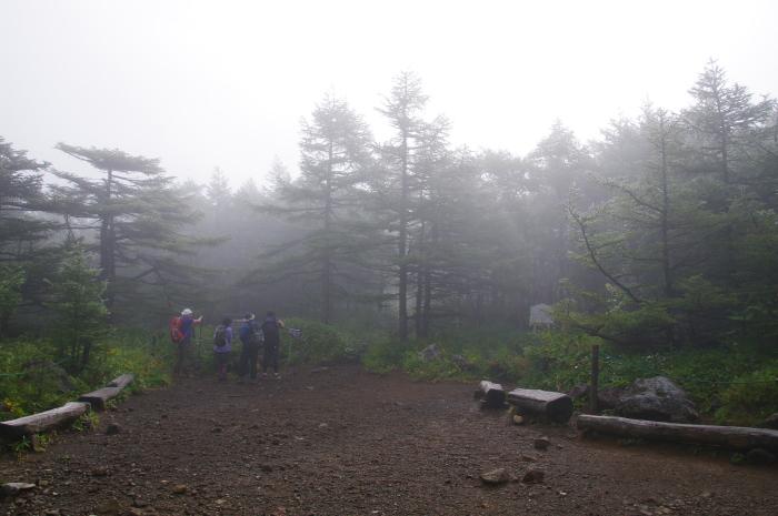 ヒカリゴケに会いに黒斑山へ_e0292469_16492999.jpg