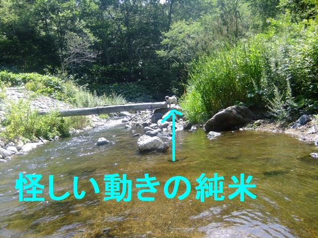 f0063791_0215237.jpg