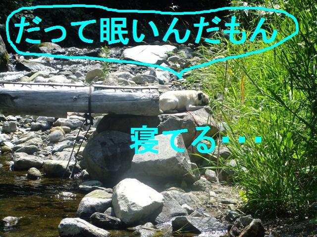 f0063791_0224798.jpg