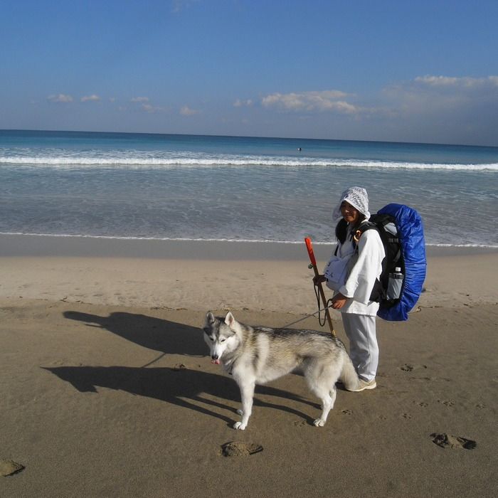 Memory of the second pilgrimage with Second husky HANA_c0049299_17142084.jpg