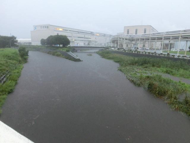 未明からの大雨と落雷 皆さんのところは大丈夫ですか?_f0141310_7243874.jpg