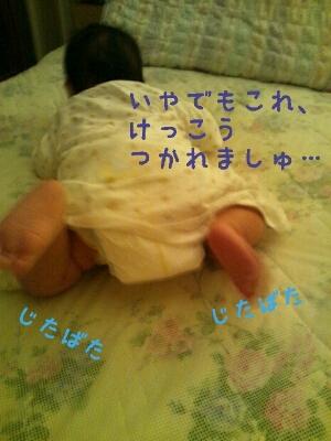 a0113323_20383347.jpg