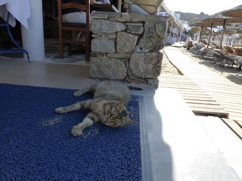 ギリシャ ミコノス島4日目-1_e0237625_224831100.jpg