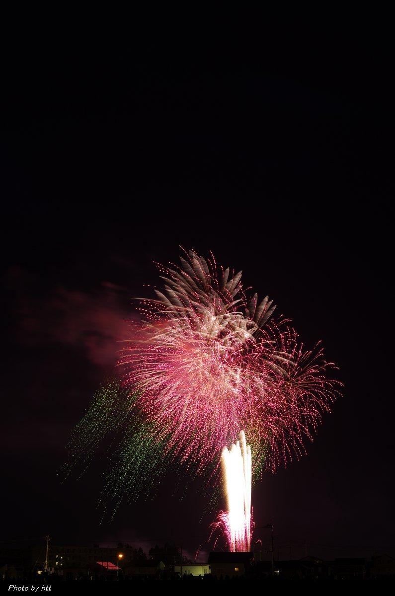第87回全国花火競技大会 創造花火 ~桜の主題~_f0148627_0143716.jpg