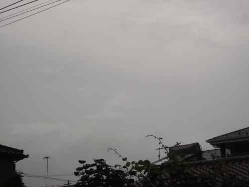 夜明けは...稲光と雷で!_b0137932_5542219.jpg