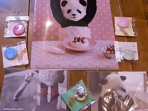 大西亜由美さんのイラストカンバッジ入荷しました_d0322493_1315254.jpg