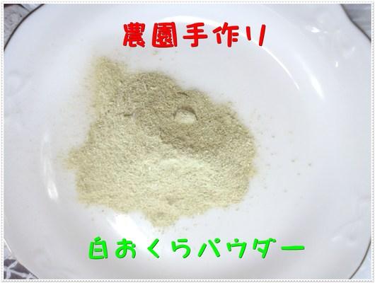 b0280161_10523483.jpg