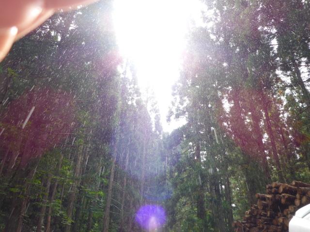夏休み第二弾 山形-宮城-秋田-岩手-福島編_f0064359_148380.jpg