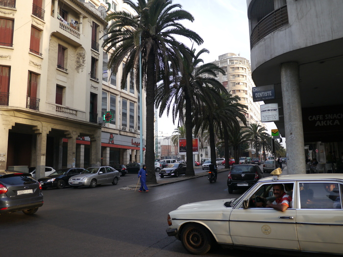 モロッコに行く。⑩ ~黄金のチューリップ~_f0232060_0554726.jpg