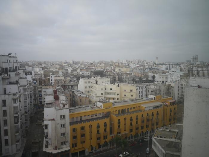 モロッコに行く。⑩ ~黄金のチューリップ~_f0232060_1642539.jpg