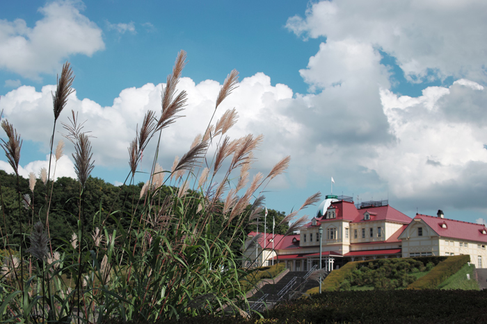 北海道開拓の村のススキ_c0182775_20141022.jpg