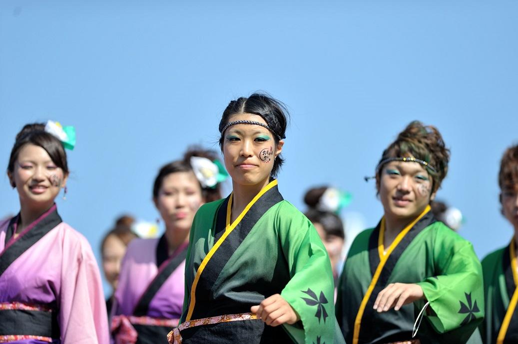 潮風よさこい「静岡大学お茶ノ子祭々」_f0184198_2221517.jpg