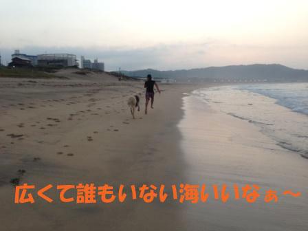 f0176830_13355119.jpg