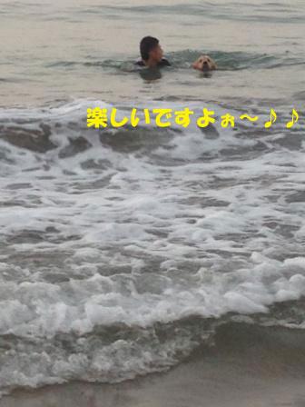 f0176830_1338593.jpg