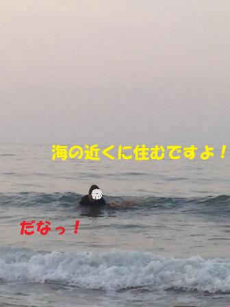 f0176830_1342162.jpg