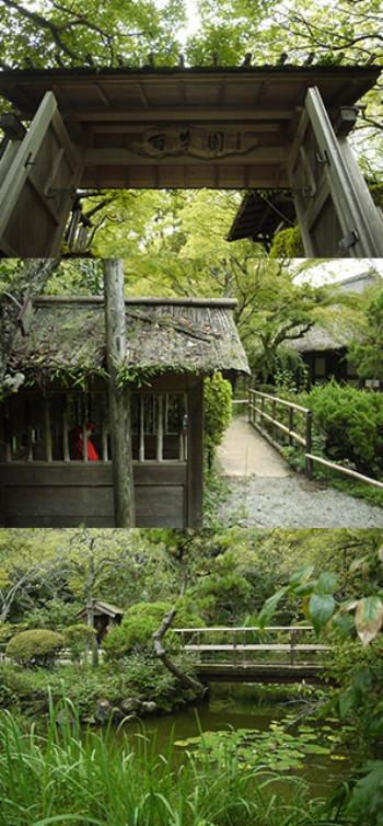 多摩散歩〜百草園2_f0152544_0211759.jpg