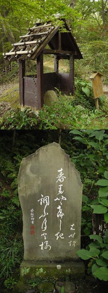 多摩散歩〜百草園2_f0152544_0251561.jpg