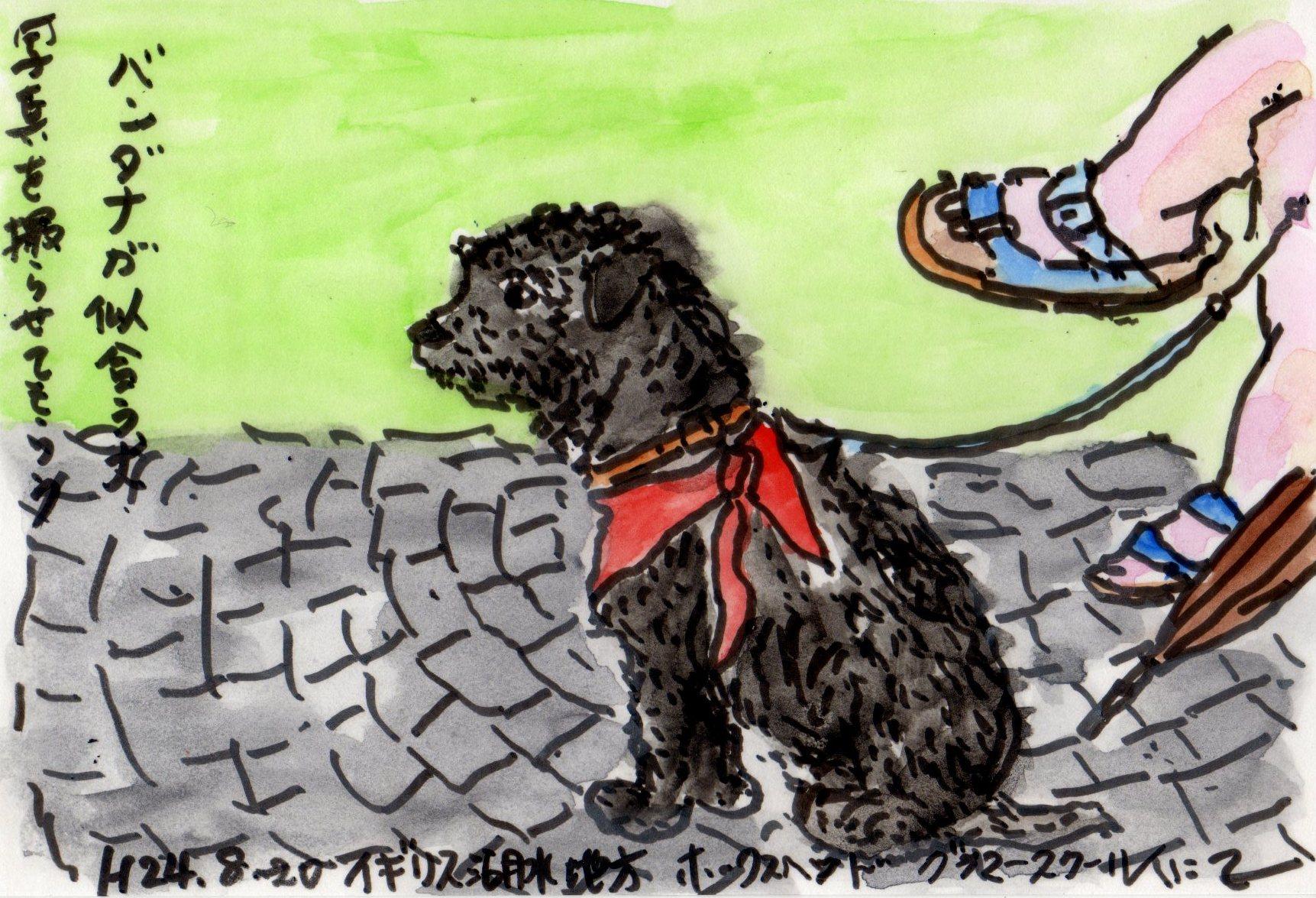 バンダナの似合う黒い犬_e0232277_10475324.jpg