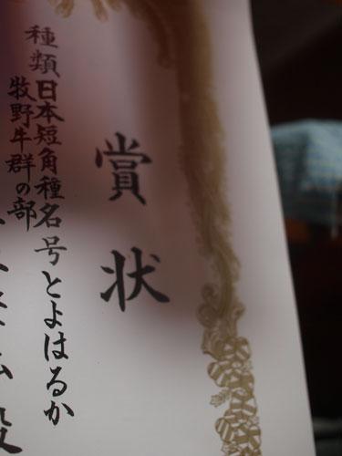 共進会のご・ほ・う・こ・く☆_f0236291_5382665.jpg