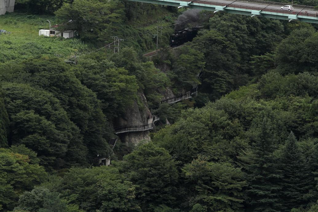 橋と遊歩道の間を汽車が走る - 2013年初秋・上越線 -  _b0190710_2326461.jpg