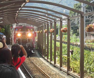 トロッコ列車_b0177436_23462265.jpg
