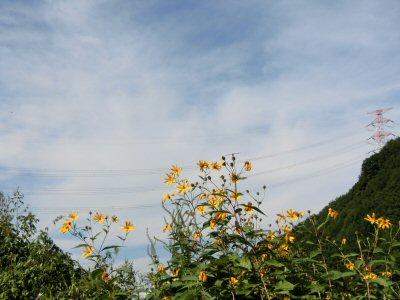 「川中島への道」第8回_f0019247_221266.jpg