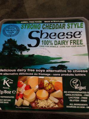 大豆から作ったチーズ風_a0175348_1529076.jpg