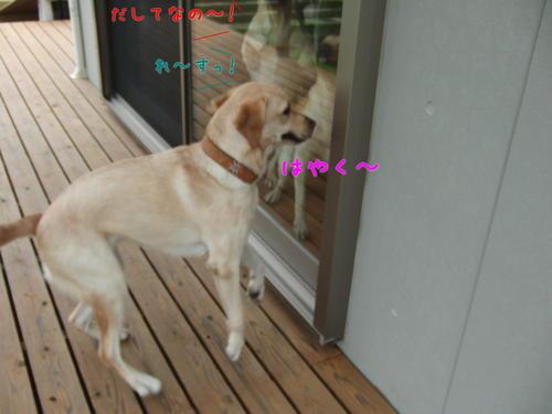 f0189870_20113338.jpg