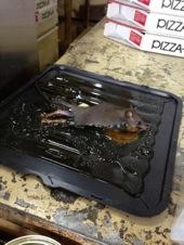 「バイトテロ」:ピザーラ店員がネズミの死体をバカッターに投稿し大炎上!!武蔵村山の店舗が営業停止_e0171614_1013892.jpg