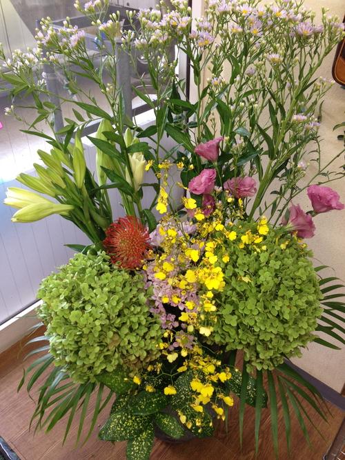 今週のお花とセール情報_a0200423_11455258.jpg