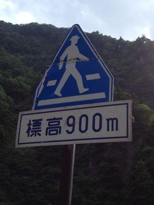 f0016823_2011639.jpg