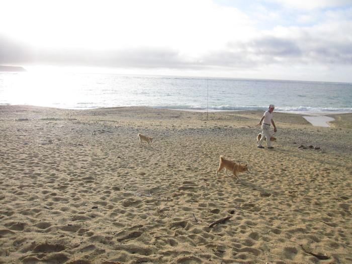 うっぱまビーチ_e0155231_23383686.jpg