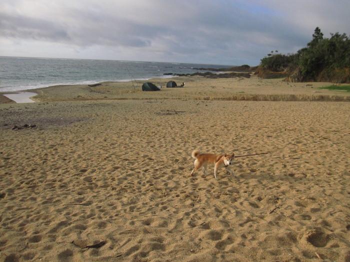 うっぱまビーチ_e0155231_23392728.jpg