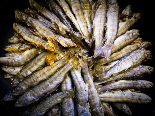 岩魚の稚魚_c0176838_2247050.jpg