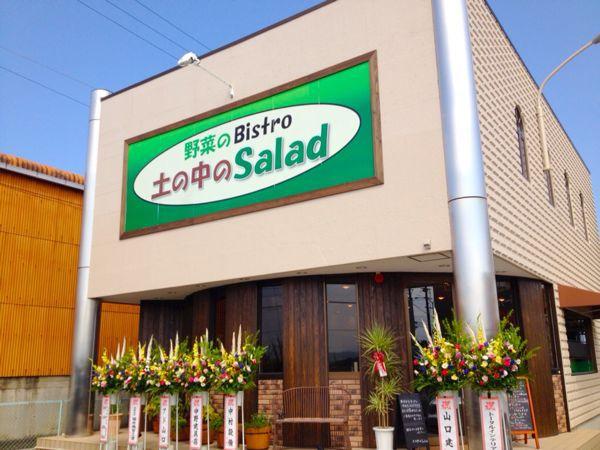 野菜のBistro  土の中のSalad_e0292546_23501984.jpg
