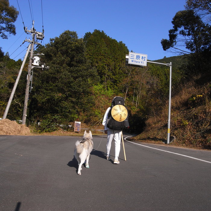 Memory of the second pilgrimage with husky HANA_c0049299_20411263.jpg