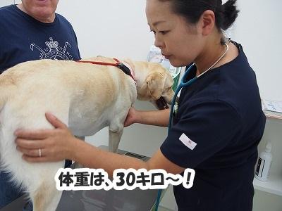 高崎の病院_e0192217_7381351.jpg
