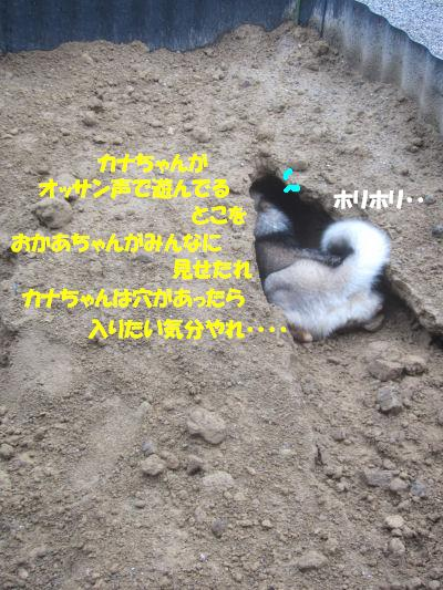 f0143123_9441646.jpg