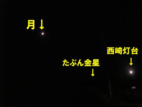 9月 12日 夜のお散歩inナーマ浜近くです。_b0158746_1845575.jpg