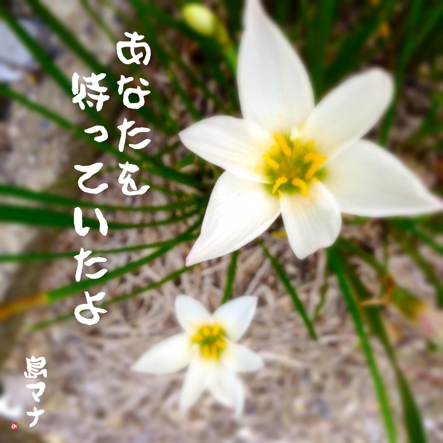 f0183846_20164487.jpg
