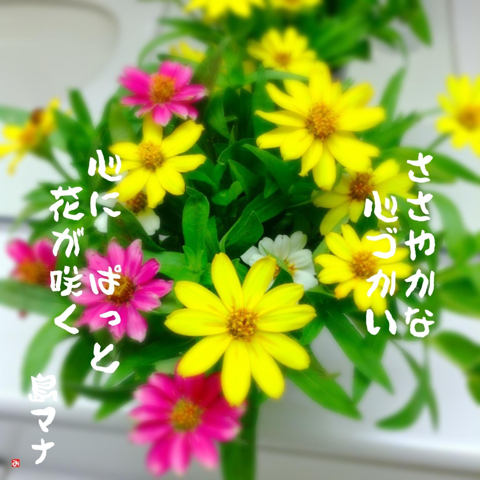 f0183846_21552724.jpg