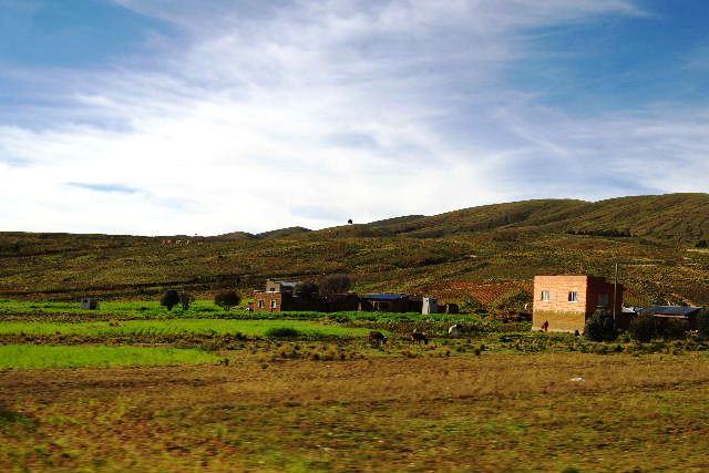 ボリビアの旅(43) ティワナクからラパスへ戻る。_c0011649_641403.jpg