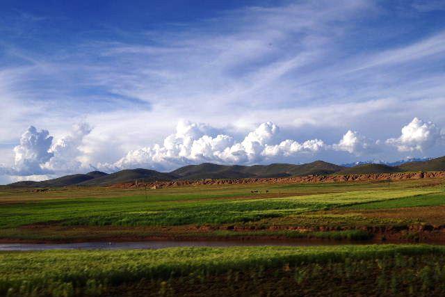 ボリビアの旅(43) ティワナクからラパスへ戻る。_c0011649_6422184.jpg