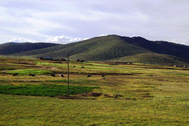 ボリビアの旅(43) ティワナクからラパスへ戻る。_c0011649_6431330.jpg